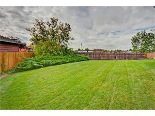 Photo 27: 545 RUNDLEVILLE Place NE in Calgary: Rundle House for sale : MLS®# C4079787