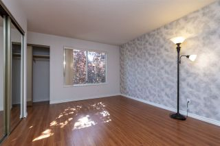 "Photo 17: 1 8691 COOK Road in Richmond: Brighouse Townhouse for sale in ""AUSTRAL LANE"" : MLS®# R2484404"