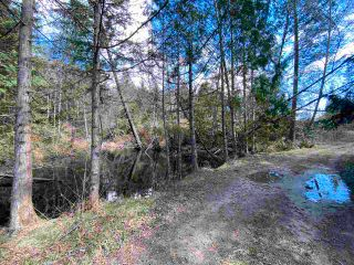 Photo 5: 1815 HARMAN Road: Roberts Creek Land for sale (Sunshine Coast)  : MLS®# R2614266