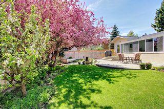 Photo 42: 382 Wildwood Drive SW in Calgary: Wildwood Detached for sale : MLS®# A1094301