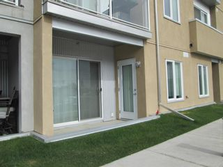 Photo 26: 2129 604 East Lake Boulevard NE: Airdrie Apartment for sale : MLS®# A1106978