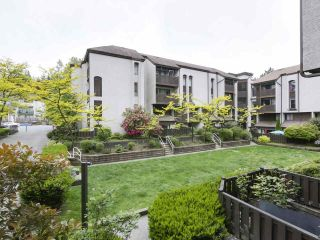 """Photo 4: 15 365 GINGER Drive in New Westminster: Fraserview NW Townhouse for sale in """"Fraser Mews"""" : MLS®# R2458131"""