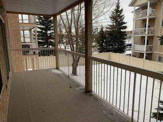 Photo 22: 203 17511 98A Avenue in Edmonton: Zone 20 Condo for sale : MLS®# E4224086