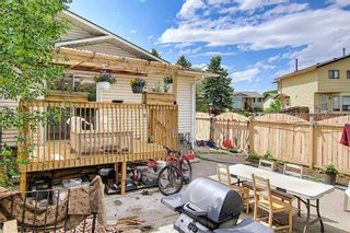 Photo 34: 217 Templemont Drive NE in Calgary: Temple Semi Detached for sale : MLS®# A1120693