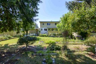 Photo 34: 12116 221 Street in Maple Ridge: West Central House for sale : MLS®# R2483493