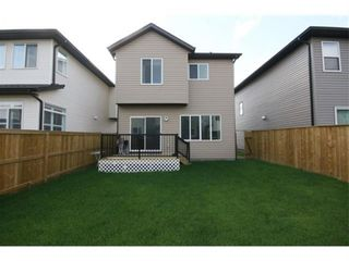 Photo 30: 249 Skyview Shores Manor NE in Calgary: Skyview Ranch Detached for sale : MLS®# A1040770