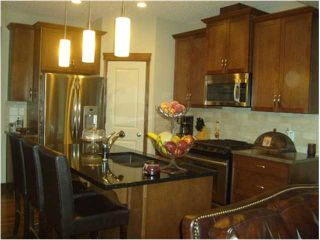 Photo 3: 262 CHAPARRAL VALLEY Drive SE in CALGARY: C-285 Residential Attached for sale (Calgary)  : MLS®# C3536921