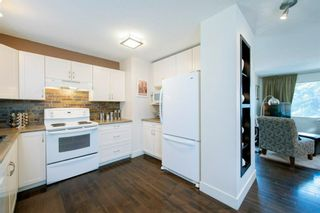Photo 15: 1343 University Drive NW in Calgary: St Andrews Heights Detached for sale : MLS®# A1103099