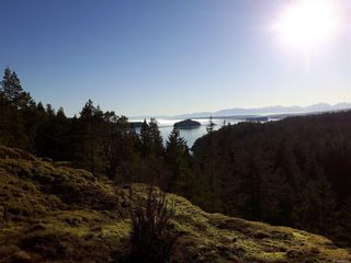 Photo 6: Lot 2 Bold Point Rd in : Isl Quadra Island Land for sale (Islands)  : MLS®# 860487