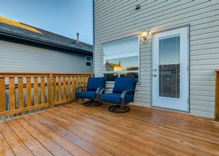 Photo 48: 103 DOHERTY Close: Red Deer Detached for sale : MLS®# A1147835