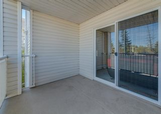 Photo 18: 2212 6224 17 Avenue SE in Calgary: Red Carpet Apartment for sale : MLS®# A1115091
