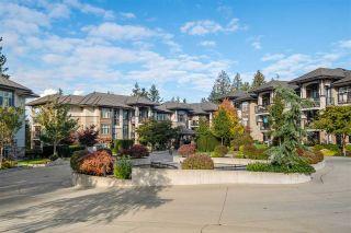 Photo 30: 103 15175 36 AVENUE in Surrey: Morgan Creek Condo for sale (South Surrey White Rock)  : MLS®# R2511016