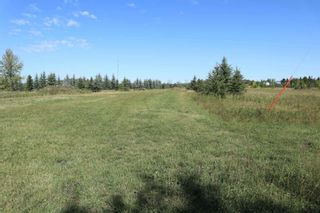 Photo 6: Hwy 622 RR 15: Rural Leduc County Rural Land/Vacant Lot for sale : MLS®# E4261453