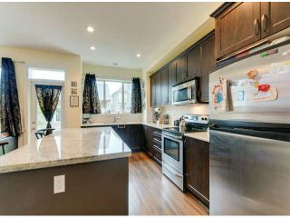 """Photo 7: 317 172A Street in Surrey: Pacific Douglas House for sale in """"SummerField"""" (South Surrey White Rock)  : MLS®# F1423266"""