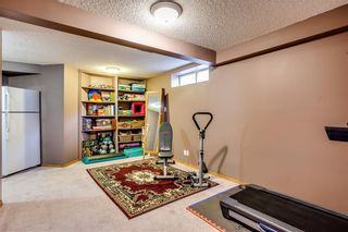 Photo 28: 121 SCHOONER Close NW in Calgary: Scenic Acres Detached for sale : MLS®# C4296299