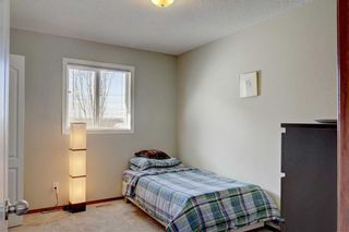Photo 30: 155 CHAPALINA Mews SE in Calgary: Chaparral Detached for sale : MLS®# C4247438