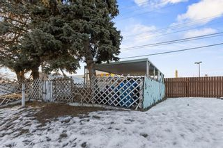 Photo 24: 216A Allan Crescent SE in Calgary: Acadia Semi Detached for sale : MLS®# A1062282