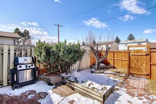 Photo 22: 199 Cedardale Road SW in Calgary: Cedarbrae Semi Detached for sale : MLS®# A1088680