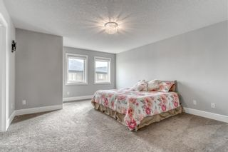 Photo 26: 804 ALBANY Cove in Edmonton: Zone 27 House for sale : MLS®# E4265185