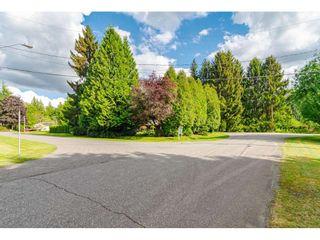 Photo 21: 4848 246A Street in Langley: Salmon River House for sale : MLS®# R2530745