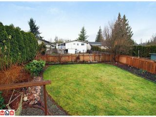 Photo 10: 4815 201 st in Langley: Langley City House for sale : MLS®# F1202417