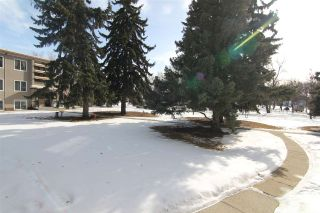Photo 27: 7 6815 112 Street in Edmonton: Zone 15 Condo for sale : MLS®# E4230722