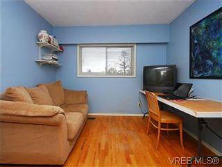 Photo 13: 1854 Elmhurst Pl in VICTORIA: SE Lambrick Park House for sale (Saanich East)  : MLS®# 572486