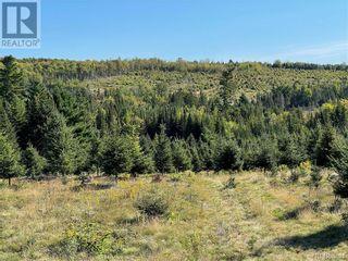 Photo 36: - Saint David Ridge in St. Stephen: Vacant Land for sale : MLS®# NB063465