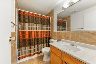 Photo 21: 28 St. Andrews Avenue: Stony Plain House for sale : MLS®# E4237499