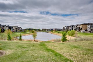 Photo 46: 17832 75 Street in Edmonton: Zone 28 House for sale : MLS®# E4248956
