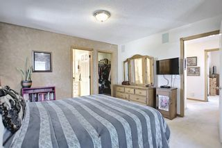 Photo 22: 131 Bridlewood Circle SW in Calgary: Bridlewood Detached for sale : MLS®# A1126092