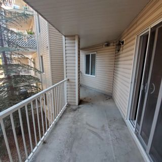Photo 24: 2207 11214 80 Street in Edmonton: Zone 09 Condo for sale : MLS®# E4257884