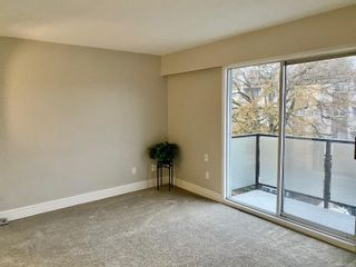 Photo 5: 302 904 Hillside Ave in : Vi Hillside Condo for sale (Victoria)  : MLS®# 860603