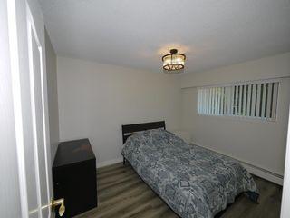 Photo 13: 27810 110 Avenue in Maple Ridge: Whonnock House for sale : MLS®# R2602015