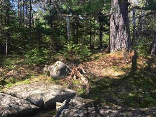 Photo 3: Lot H-1 Highway 10 in Meisners Section: 405-Lunenburg County Vacant Land for sale (South Shore)  : MLS®# 202113679