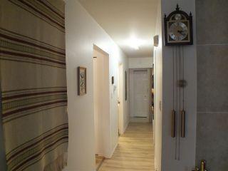 Photo 13: 31241 BRIDGE Street in Yale: Hope Laidlaw House for sale (Hope)  : MLS®# R2513837