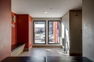 Photo 28: 331 344 WINDERMERE Road in Edmonton: Zone 56 Condo for sale : MLS®# E4261659