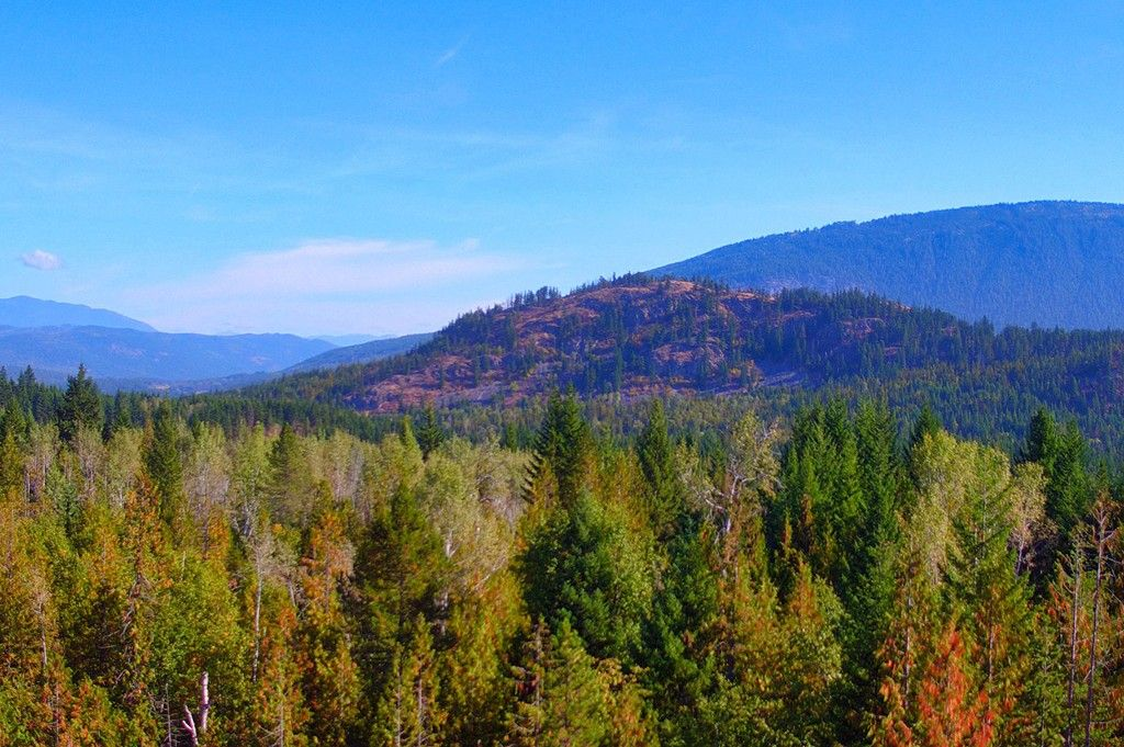 Photo 25: Photos: Lot 17 Recline Ridge Road in Tappen: Land Only for sale : MLS®# 10200571