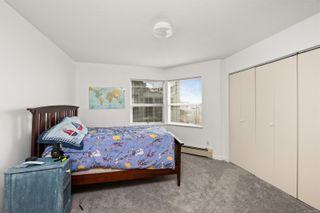 Photo 17: 376 Beach Dr in : OB South Oak Bay House for sale (Oak Bay)  : MLS®# 859524