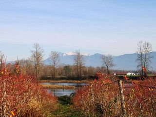 Photo 6: 41630 LOUGHEED Highway in Mission: Dewdney Deroche Agri-Business for sale : MLS®# C8037779