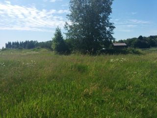 Photo 8: 29700 HUNTINGDON Road in Abbotsford: Aberdeen Land for sale : MLS®# F1415007