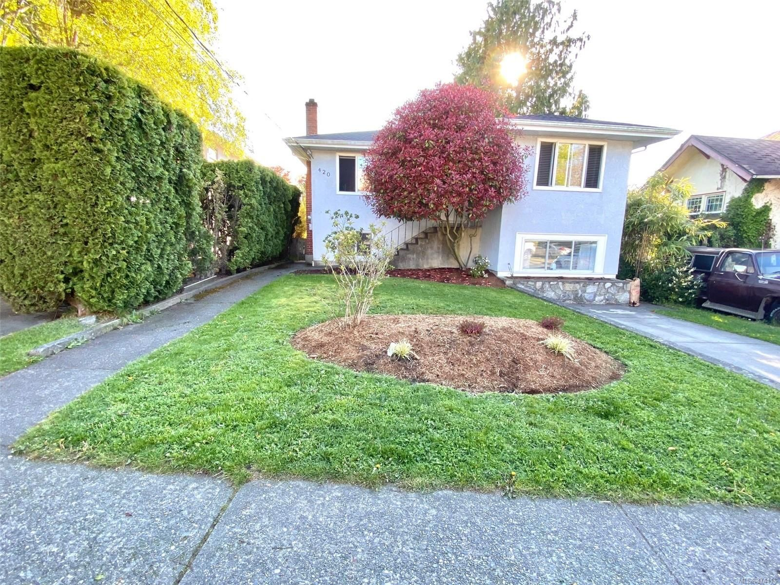 Main Photo: 420 Richmond Ave in : Vi Fairfield East House for sale (Victoria)  : MLS®# 874416