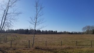 Photo 8: 5B-51222 Rge Road 270: Rural Parkland County Rural Land/Vacant Lot for sale : MLS®# E4133498