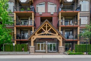 """Photo 2: 316 8328 207A Street in Langley: Willoughby Heights Condo for sale in """"Yorkson Creek Park"""" : MLS®# R2150359"""