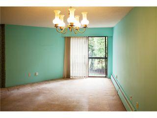 Photo 7: 207 2033 W 7TH Avenue in Vancouver: Kitsilano Condo for sale (Vancouver West)  : MLS®# V948173