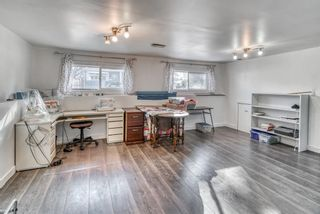 Photo 20: 10011 Warren Road SE in Calgary: Willow Park Detached for sale : MLS®# A1083323