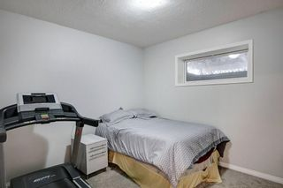 Photo 25: 21 CITADEL CREST Place NW in Calgary: Citadel Detached for sale : MLS®# C4197378