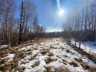 Photo 1: 54419 R.R. 14: Rural Lac Ste. Anne County Rural Land/Vacant Lot for sale : MLS®# E4233036