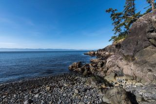 Photo 45: 2470 Lighthouse Point Rd in : Sk French Beach House for sale (Sooke)  : MLS®# 867503