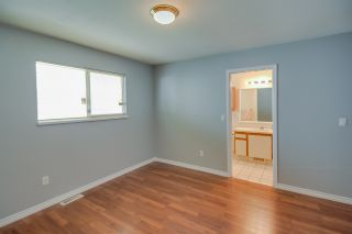 Photo 11: 20208 116B Avenue in Maple Ridge: Southwest Maple Ridge House for sale : MLS®# R2116409